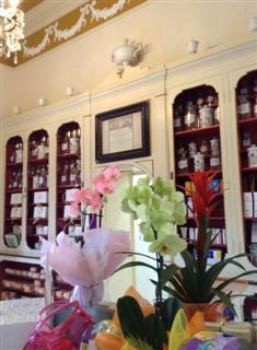 inaugurazione restyling farmacia san jacopo livorno